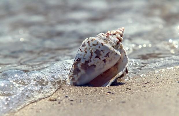 Возле моря в Одессе