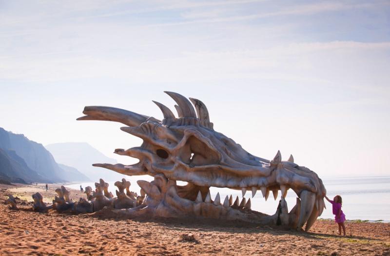 интересные снимки на пляже