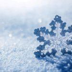 Какие тайны хранит снег? (28 фото)
