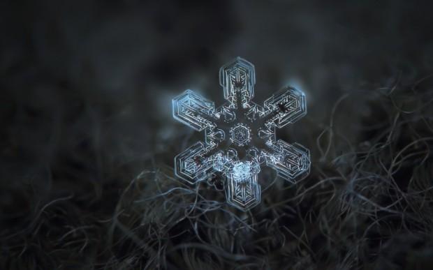 Какие тайны хранит снег