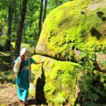 Каменное село, Украина