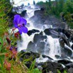 Красота горного Алтая: Телецкое озеро и Чульчинский водопад