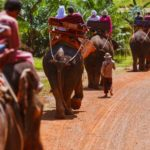 Отдых в Таиланде: гиды и экскурсии на русском (5 фото)