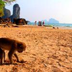 Пляж Ао-Нанг в Краби (15 фото)