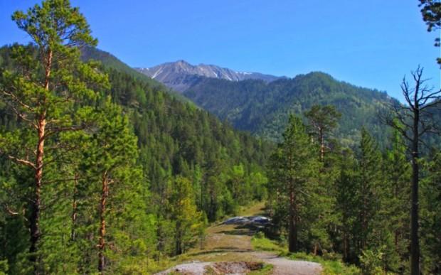 Туризм в России. Аршан