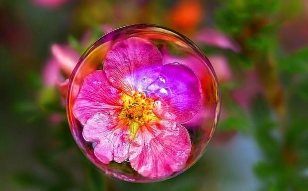 Что мы знаем про мыльные пузыри