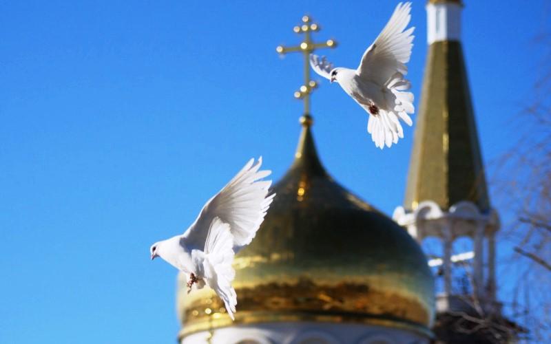 Выпускай на белый свет голубей