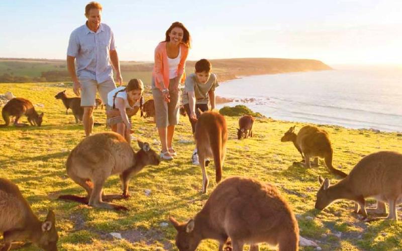 Едем на отдых. Австралия