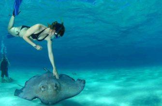 Жемчужина Тихого океана – Остров Бора-Бора