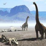 Интересные места Благовещенска: город драконов, кладбище динозавров
