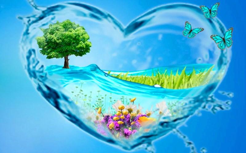 Интересные факты о воде
