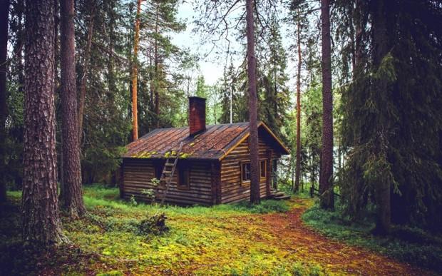 Как работает слово, услуги SEO копирайтера, в общем, домик в лесу