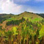 Карпаты, отдых в Яблунице (21 фото)
