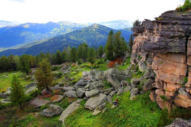 Курумник на хребте Корбу, Алтай