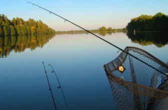 Нижняя Волга – рай рыбака