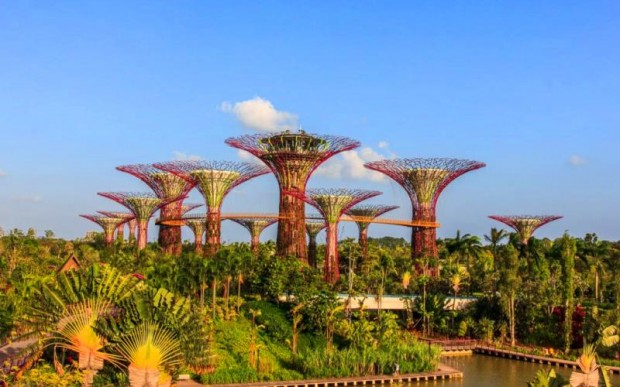Отдых в Сингапуре: интересно, безопасно, недорого