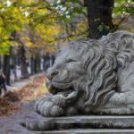 Путешествие в город льва – Львов