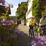 Рейнская велосипедная дорожка (17 фото)