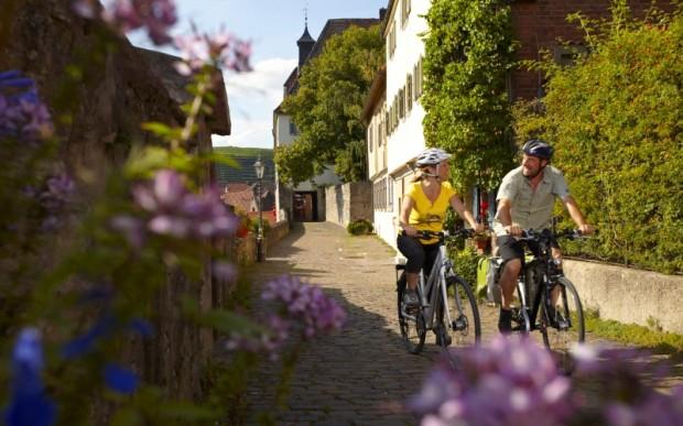 Рейнская велосипедная дорожка
