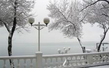 Самостоятельное путешествие в Краснодар в декабре