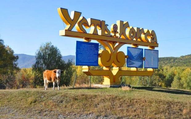Синяя Вода – Усть-Кокса – центр туризма Горного Алтая