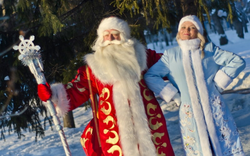 С Новым годом, друзья! И пусть Дед мороз исполнит Ваши мечты!