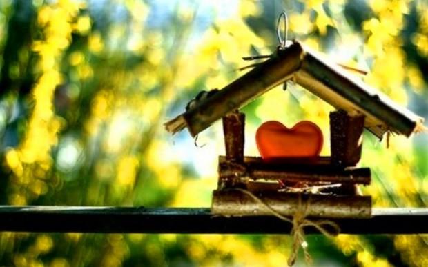 Там, где любовь – там дом